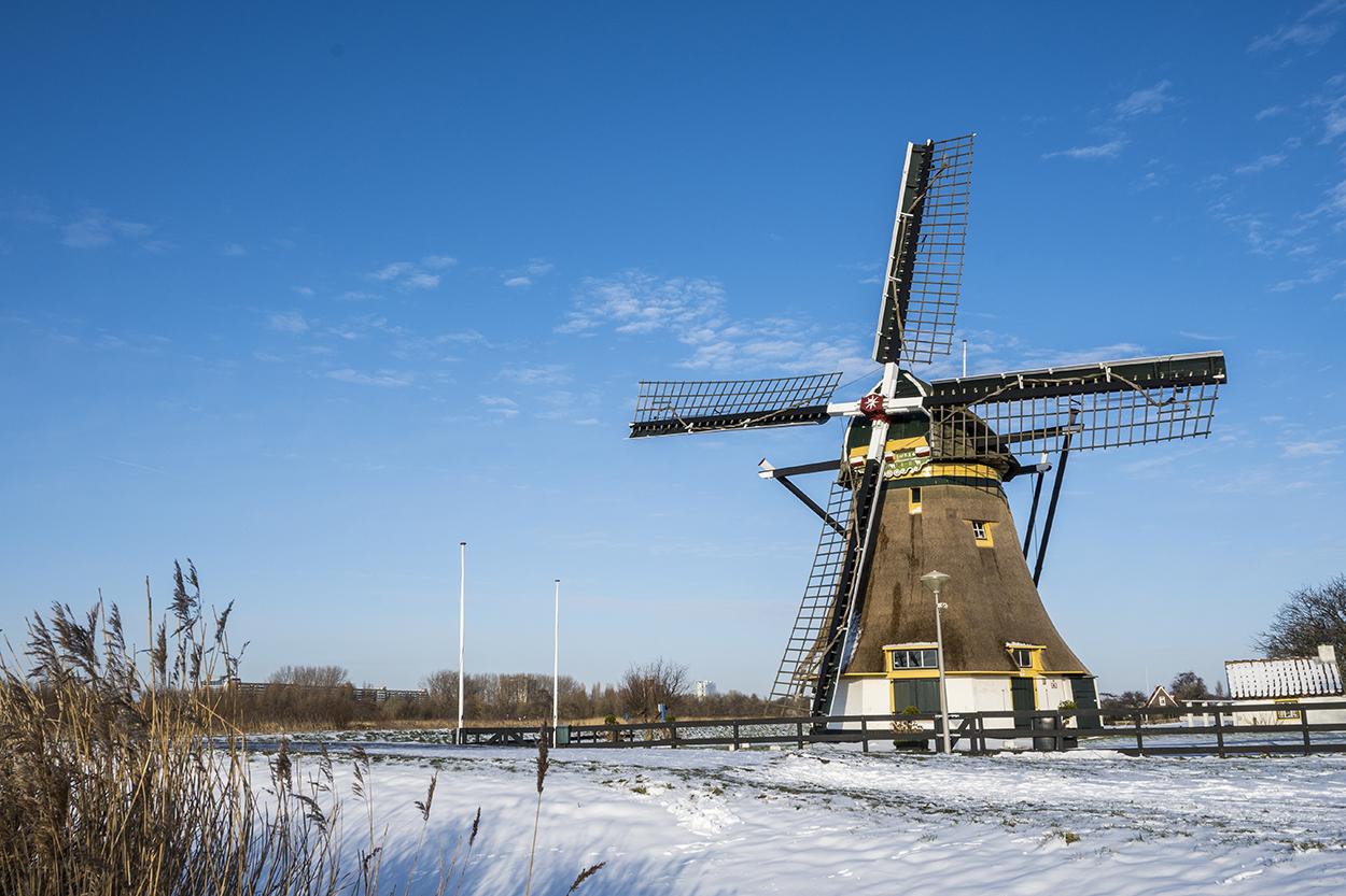 Rijswijk in de sneeuw